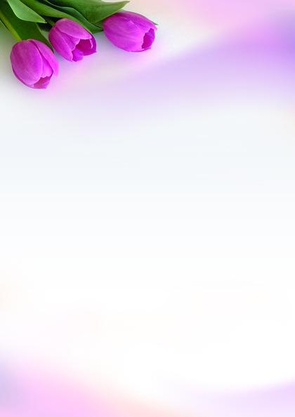 barevné archy Fanfán, 50ks