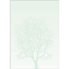 Galeria Papieru barevné archy Strom, 50ks