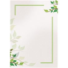 Galeria Papieru diplomy Green 170g, 25ks